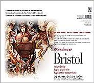 Strathmore Paper 580-42 500 Series Sequential Art Bristol