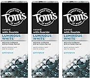 Tom's of Maine 亮白牙膏,含木炭 3 件装,冬青,冬绿色,4 盎司(113克),