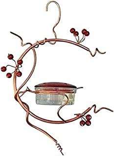 ascavs 蜂鸟喂食器 - 3.4 盎司(约 96.4 克)鸟类喂食器,易于清洁,春夏装饰,蜂鸟喂食器,户外,甲板,庭院,花园,庭院,庭院