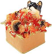 PIEARTH 珠宝盒 柴犬Kotetsu君与红叶 EX510-6