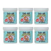Bad Air Sponge Air Odor Absorbent, 14 ounce (Pack of 6)