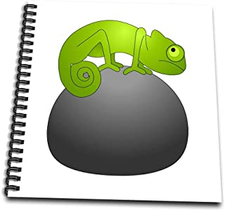 3dRose db_35455_1 Cute Green Chameleon Sitting on a Rock-Drawing Book, 8 by 8""