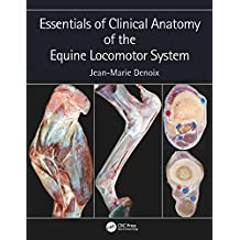 Essentials of Clinical Anatomy of the Equine Locomotor System (English Edition)