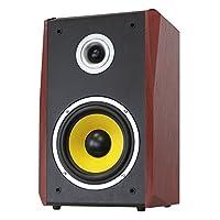 Dynavox TG-1000B-E Hi-Fi 扩音器 50 W 黑色 一对