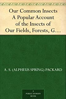Our Common Insects A Popular Account of the Insects of Our Fields, Forests, Gardens and Houses (English Edition)