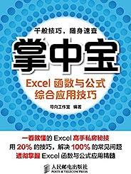 掌中宝——Excel函数与公式综合应用技巧 (掌中宝系列)