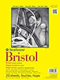 Strathmore 300 系列 Bristol 画图本 - 14 英寸 x17 英寸 - 20 张画纸