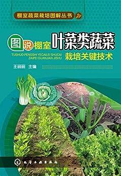 """""""图说棚室叶菜类蔬菜栽培关键技术"""",作者:[王丽丽]"""
