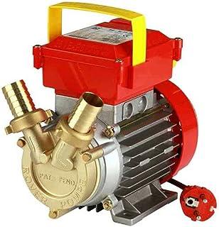 Rover Pompe Rover 25Ce - 传输泵 Rover 25Ce 08Hp 2500L/H