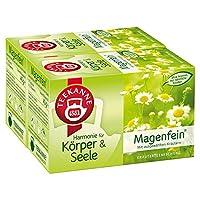 Teekanne Magenfein Kr?uterteemischung 20 Beutel, 2er Pack (2 x 40 g Packung)