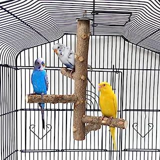 MJEMS 鸟玩具 - 鸟栖息地支架,鹦鹉鲈鱼杆玩具支架笼配件天然木叉支架栖息地木制平台适用于鹦鹉长尾鹦鹉、鹦鹉、鹦鹉、鹦鹉、鹦鹉、鹦鹉、鹦鹉、鹦鹉、鹦鹉、鹦鹉、鹦鹉、鹦鹉、鹦鹉、