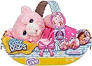 Little Live Pets Cozy Dozy Pinki 粉色小熊玩具