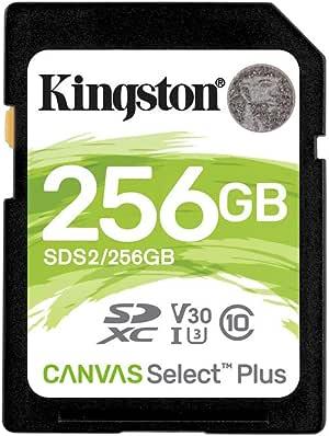 Kingston Technology HyperX 显卡SDS2/256GB 256GB