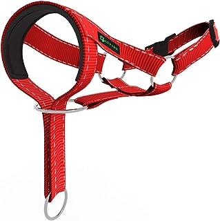 Lepark 狗狗头套训练用彩色头套狗狗停止拉扯,可调节和轻松控制头部系带(S,红色)