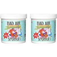 Bad Air Sponge 空气气味吸收剂,14盎司/约396.89克,2件装