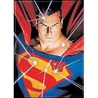 Ata-Boy DC Comics Alex Ross 正义联盟 6.35 厘米 x 8.89 厘米磁铁,用于冰箱和储物…