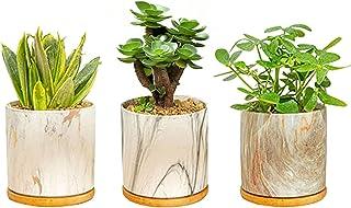 大理石花盆 4 英寸(约 10.2 厘米),植物陶瓷花盆 3 件装,室内/室外花盆,带排水孔和竹托盘,适合种植者、多肉植物、仙人掌和*