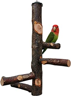 ZARYIEEO 鸟鹦鹉栖息架 鸟笼 玩具活动分支 适用于长尾鹦鹉、鹦鹉、锥尾鹦鹉、金刚鹦鹉、金刚鹦鹉、爱情鸟、鳍
