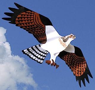 Jackite Osprey 风筝