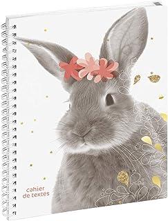 Exacompta 999149E 家庭作业本 趣味宠物兔子 花朵 17 厘米 x 22 厘米