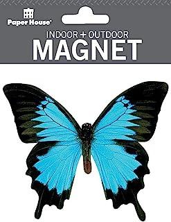Paper House Productions 8.89 cm x 8.26 cm 模切山地蓝色蝴蝶形状磁铁适用于汽车、冰箱和储物柜