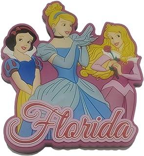 Disney Princesses 磁铁佛罗里达纪念品
