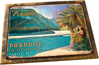 "Exotic Kauai 装饰金属标志 13""x17"" Framed 5401F"