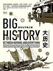 大历史(黄仁宇大历史观的全球通史版,8大门槛展现138亿年的大历史,曾改变比尔·盖茨的思考和学习模式!)