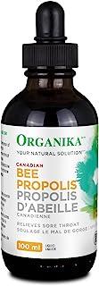 BEE 蜂胶 - 不含酒精液体 100毫升