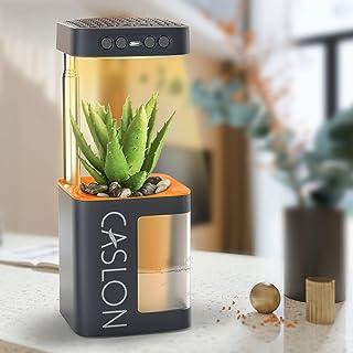植物生长灯 种植植物灯 全光谱 适用于台盆 3 种开关选项和 3 种亮度级别 智能定时功能 室内植物蔬菜 花卉和盆栽植物(橙色)