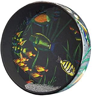 Remo 海洋鼓,鱼头 2.5 英寸 x 16 英寸