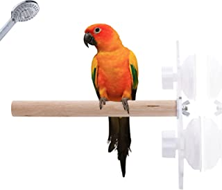 KAMA BRIDAL 鸟木淋浴栖息地,鸟座栖息地,鹦鹉栖息地带吸盘,适用于家庭户外窗户玻璃鸟笼长尾鹦鹉和鹦鹉支架