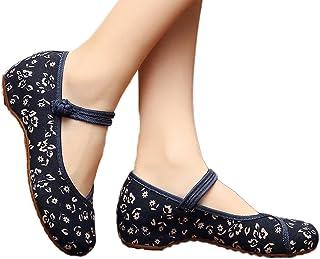 AvaCostume 女士花朵绘画平底玛丽珍宝礼裙鞋