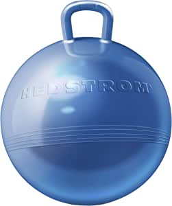Hedstrom 15 英寸(约 38.1 厘米)金属蓝色趣味料斗