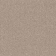 SHINCOLE 瓷砖地毯 16 张 葡萄色 PAC-275