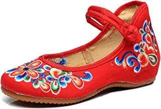 AvaCostume 女士中国刺绣休闲玛丽珍旅行鞋