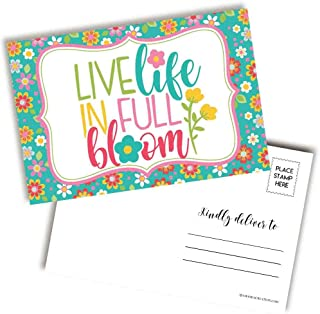 Live Life In Full Bloom 明亮多彩春季主题空白明信片,可发送给朋友和家人,10.16 厘米 x 15.24 厘米填写记事簿 AmandaCreation (20)