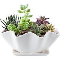 Mkono 15.24cm 陶瓷吸盘花盆,配有碟子装饰植物盆,带排水层