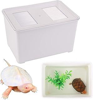 Zvaiuk 2 件乌龟坦克适用于麝香和泥浆乌龟,2 件塑料植物,1 包镊子,龟文化彩色坦克,海龟缸水族箱使乌龟颜色和图案更加美丽(白色,X)