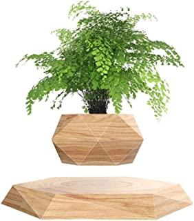悬浮空气盆景盆栽六角形浮动迷你旋转花盆花盆花盆,适用于家庭客厅办公室书桌装饰礼品(木色)