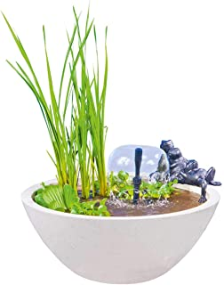 Heissner 015175-00 圆形水池花园 - 白色