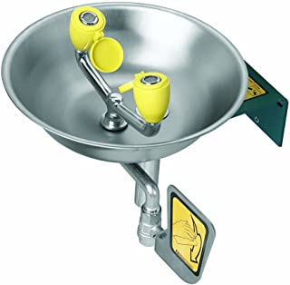 Speakman SE-582 Wall Mounted Eyewash with Twin Aerated Sprays, Stainless Steel B,