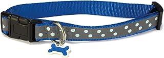 Arquivet 8435117885530 – 项链狗狗反光蓝色 1.6 x 25/35 厘米