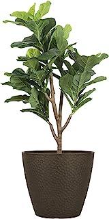 户外室内树 – 14 英寸(约 35.5 厘米)大花盆花盆,花盆,棕色,蜂窝