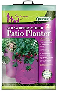 Haxnicks HAX03SP 2 草莓和草本植物花盆,粉色,30 x 30 x 5 厘米
