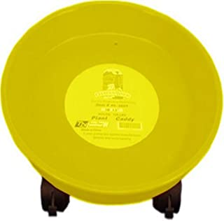 Tierra Garden 40-425Y 15 英寸植物箱,黄色