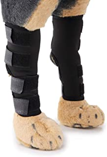 狗狗护膝,后腿狗狗护腿,狗狗护膝适用于撕裂 Acl 护膝,狗狗后腿 用于保护*防止受伤和扭伤帮助,*的稳定性损失(L 尺寸)