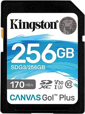 ingston 128GB microSDXC Canvas React Plus 285MB/s 读取SDG3/256GB SD 卡 256GB