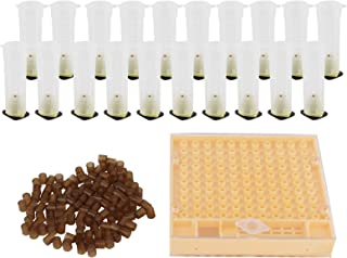 Buachois Bee Rearing Cup Kit System Queen Bee Cage and Queen Bee Cage 保护盖 蜜蜂培育箱蜂饲养设备 养设备 养蜂工具