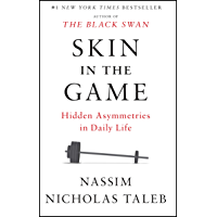 Skin in the Game: Hidden Asymmetries in Daily Life (English…